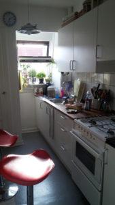 デンマーク人のキッチン