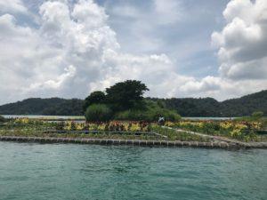 拉魯島(ラールー島)