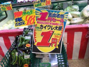 カイワレ 1パック1円
