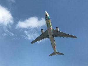 すぐ頭上をエバー航空が飛んでいく