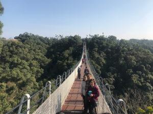 謎の吊り橋