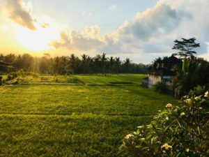 宿泊しているヴィラから見える夕日