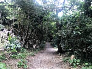 大石林山の入り口