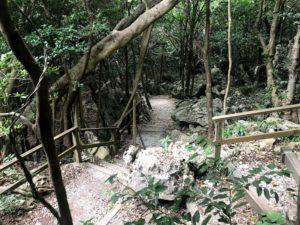 大石林山の入口