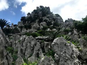 大石林山は岩と森でできた山