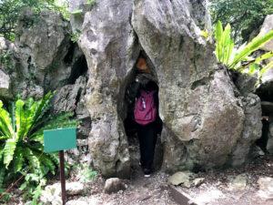 生まれ変わりの石
