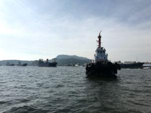 船のデッキから見た景色