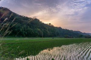 台湾の田舎。秋は朝晩が涼しくなってくる季節だ。