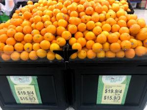 オーストラリア産のオレンジの物価