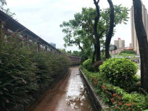 MTR彩虹駅からの道