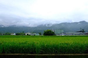 花蓮の農村地区