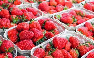 台湾の果物6:いちご(草莓)