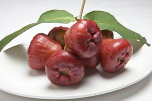 レンブ(ワックスアップル、蓮霧)という果物について