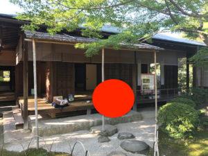 犬山散策⑦:有楽苑(如庵) - 国宝や重要文化財が眠る日本庭園
