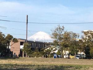遠くには富士山も見える