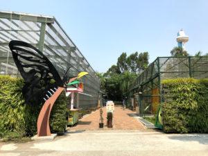ちょうちょ園の入口
