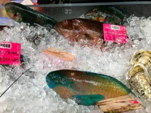 沖縄のカラフルな鮮魚がお出迎え