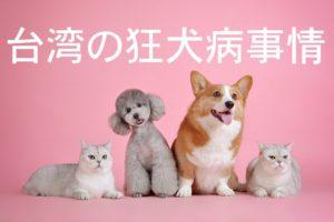 台湾で狂犬病にかかる?発症例、リスク、注意事項まとめ。